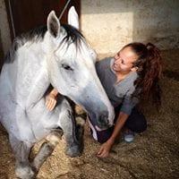 blog de caballos nmv horses natalia mendez del valle blog de hipica