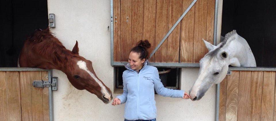 blog de caballos nmv horses natalia mendez del valle blog de equitación