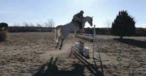 entrenamiento de salto