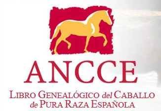 logo-ancce-2