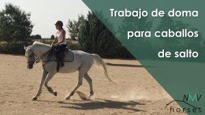 trabajo-doma-caballos-salto