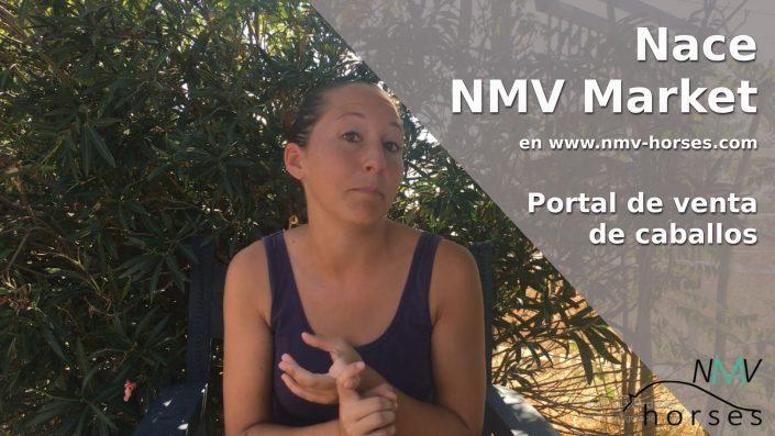 nmv-market-venta caballos