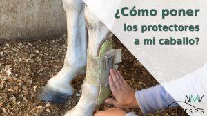 como-poner-protectores-caballo