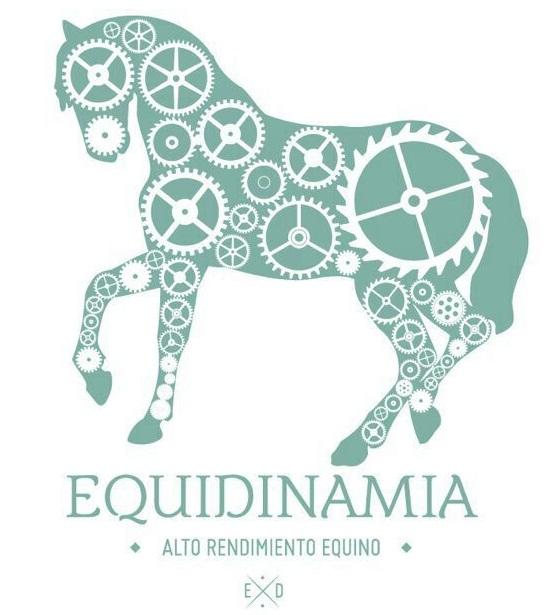 equidinamia