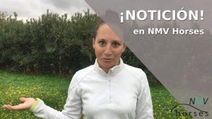 noticion-en-nmv-horses-videos-minuto-ecuestre