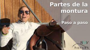 partes de la montura del caballo