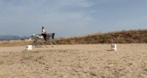 ejercicio rectitud y cambio d epie a caballo