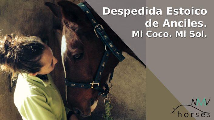despedida estoico de anciles. coco. nmv horses