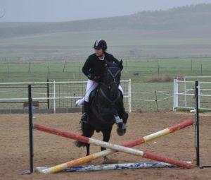 angela gomez alumna nmv horses