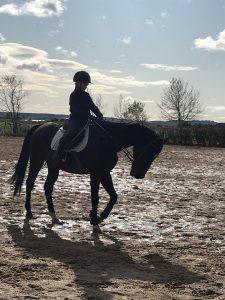 beatriz montejano alumna nmv horses