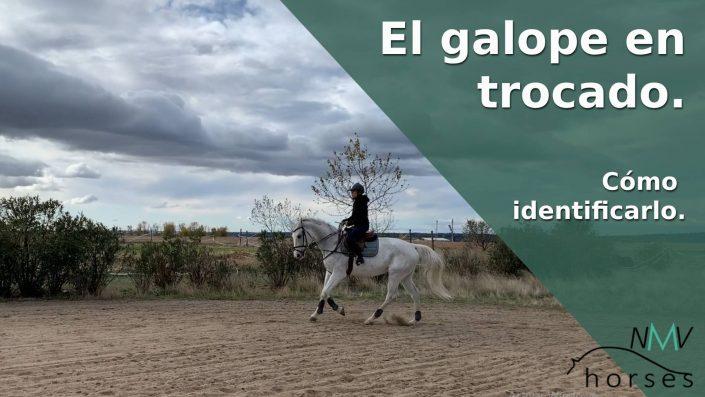 como identificar el galope en trocado con mi caballo