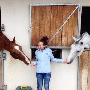 como ha sido nuestro 2019 nmv horses resumen