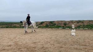 como hacer un circulo con tu caballo