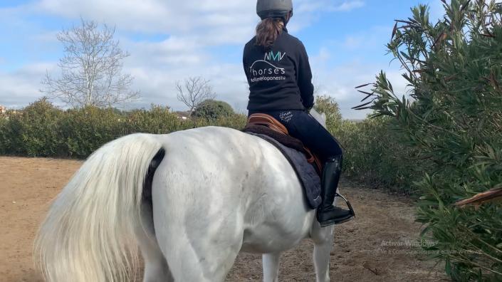 como hacer una diagonal con tu caballo
