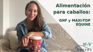 alimentacion para caballos maxi top equine y gnf equinvest trm nutricion