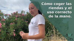 blog de hipica. como coger las riendas y el uso correcto de la mano montando a caballo