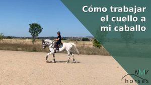 como trabajar el cuello a mi caballo