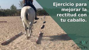 mi caballo se tuerce ejercicio para mejorar la rectitud a caballo