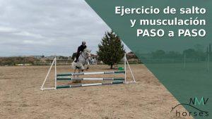 ejercicio de salto y musculacion para tu caballo