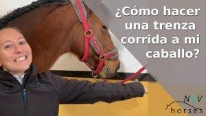 como hacer una trenza corrida a mi caballo
