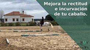 ejercicio a caballo mejora la rectitud